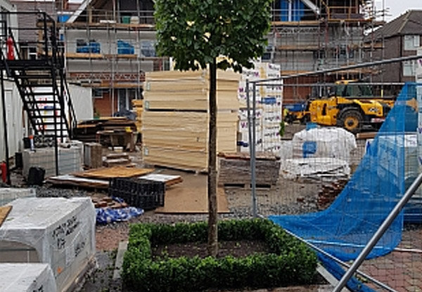 Boxhead Trees and hedging installed for kerb appeal